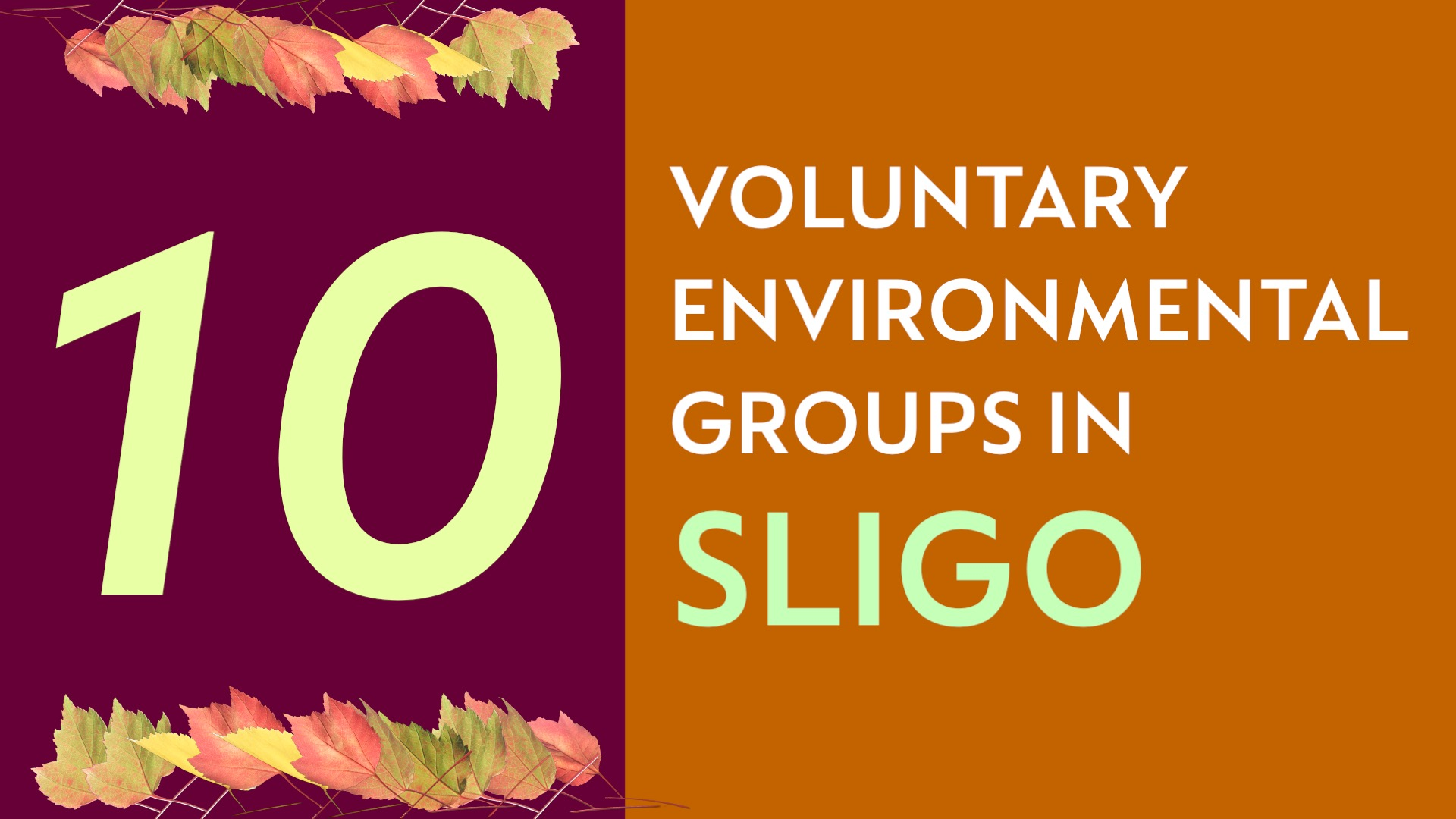 Blog 7 - Sligo's Environmental Community